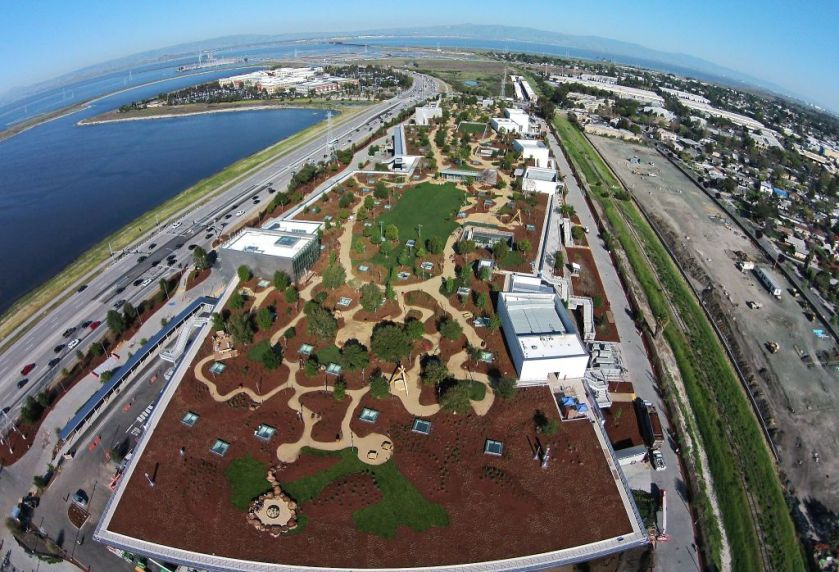 MPK 20, Facebook's Frank Gehry Building, Native Rooftop Garden, Facebook HQ, Style Blog